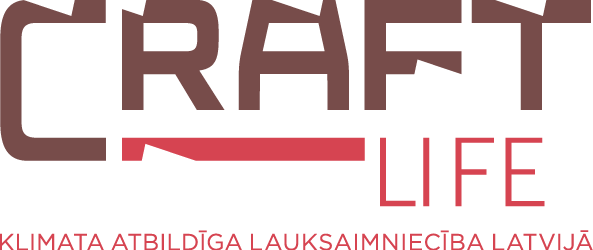 Life Craft logo